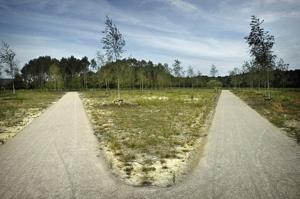 begraafpark is molensteen om nek gemeente Ten Boer. Gelijk aan andere locaties natuurbegraafplaatsen