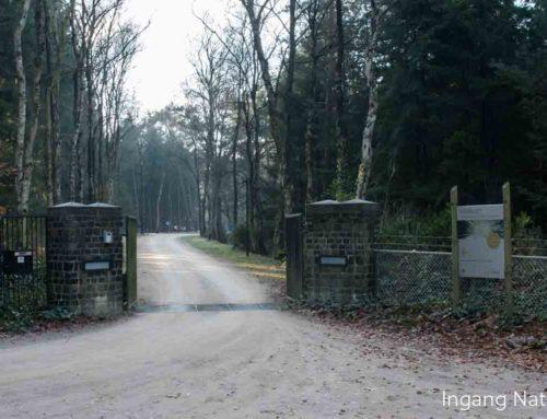 Gelderland beperkt natuurbegraven